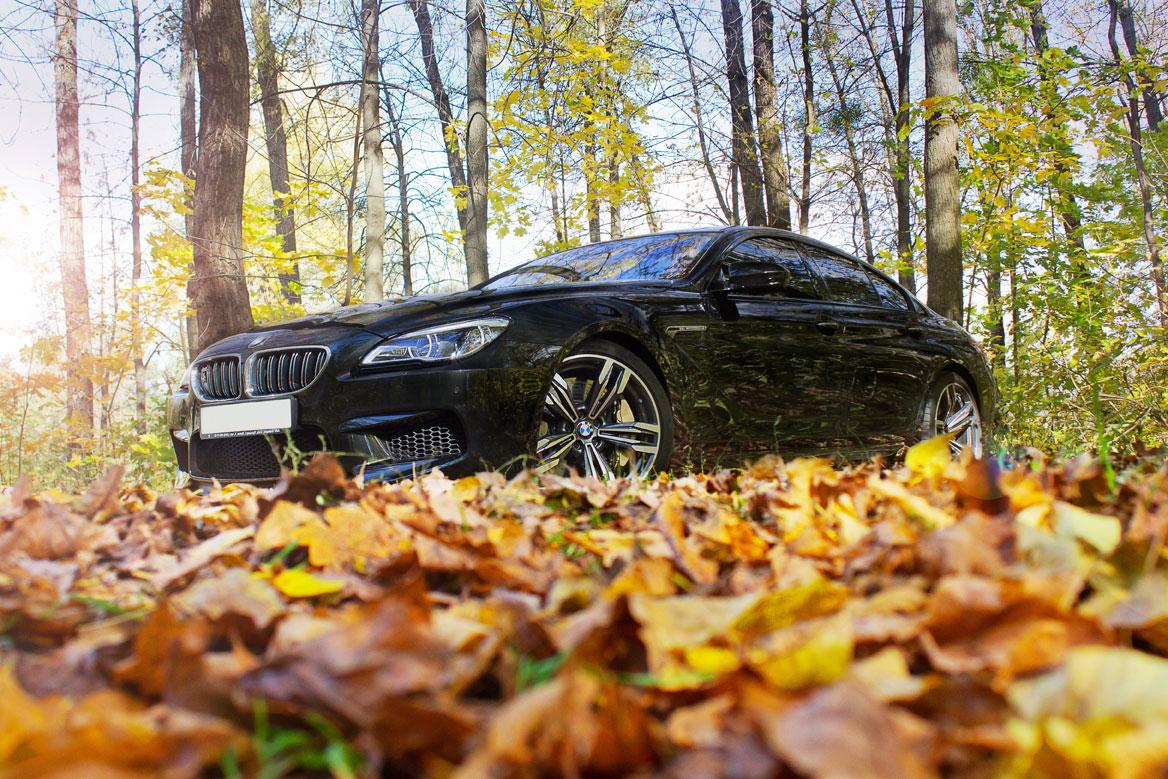 coche otoño bmw